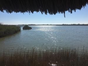 naturreservat m lagunare